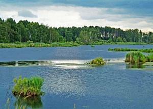 Первый российский национальный парк - Лосиный Остров - создан по инициативе научной и природоохранной общественности...